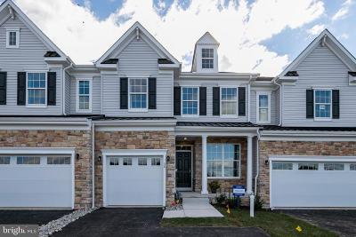 Phoenixville Townhouse For Sale: 317 Goldman Drive