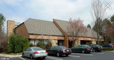 Montgomery County Condo For Sale: 1000 Germantown Pike #J2, J3,