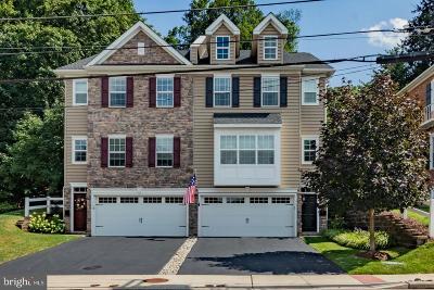 Conshohocken Single Family Home For Sale: 151 Moorehead Ave.