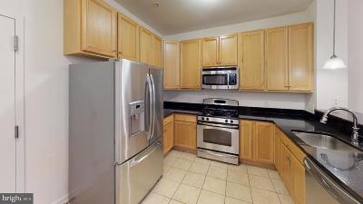 Conshohocken Single Family Home For Sale: 350 W Elm Street #3413