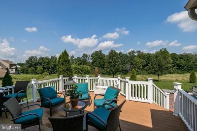 Harleysville Single Family Home For Sale: 431 Hoffman Road