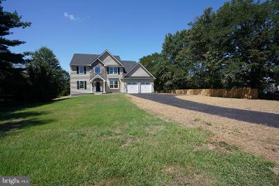 Harleysville Single Family Home For Sale: 461 Groff Mill Road