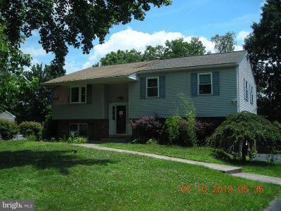 Collegeville Single Family Home For Sale: 282 Lloyd Avenue