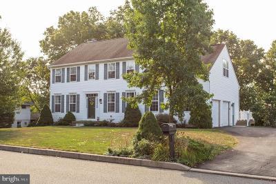 Single Family Home For Sale: 1036 Stuart Drive
