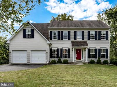 Single Family Home For Sale: 490 Reginald Lane