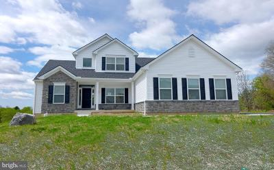 Single Family Home For Sale: 4816 Reston Drive