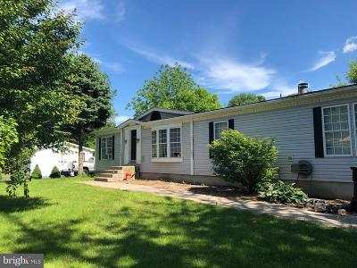 Easton Single Family Home For Sale: 80 Young Street