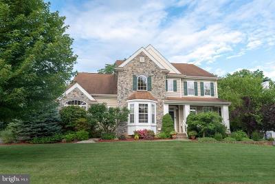 Easton Single Family Home For Sale: 2725 Fringe Lane