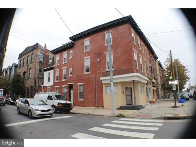 Northern Liberties Multi Family Home For Sale: 341 W Girard Avenue