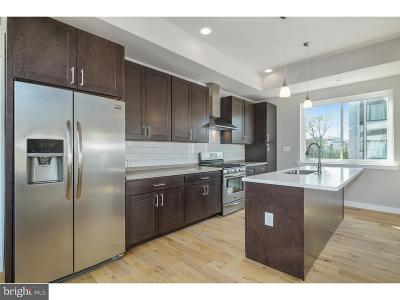 Philadelphia County Condo For Sale: 1625 Ridge Avenue #2