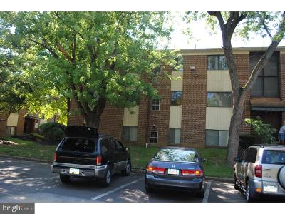 Bustleton Single Family Home For Sale: 9921 Bustleton Avenue #C1