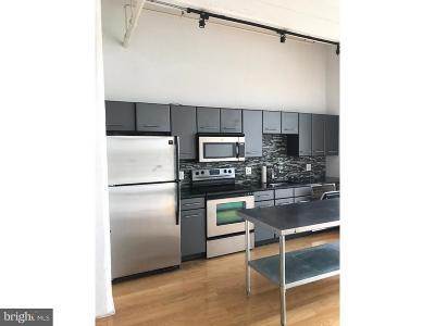 Northern Liberties Condo For Sale: 444 N 4th Street #619