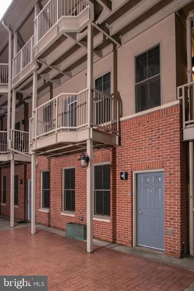 Philadelphia County Condo For Sale: 133 N Bread Street #J1