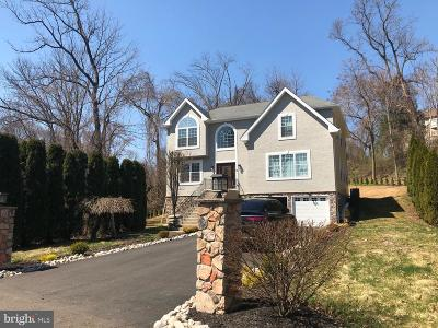 Philadelphia Single Family Home For Sale: 1147 Stevens Road
