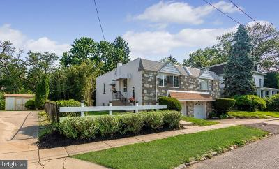 Philadelphia Single Family Home For Sale: 517 Independence Avenue