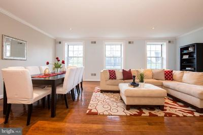 Philadelphia Condo For Sale: 924 Spruce Street #301