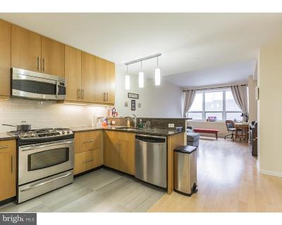 Rittenhouse Square Condo For Sale: 1425 Locust Street #12E