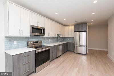 Northern Liberties Condo For Sale: 1005 N Marshall Street #1