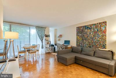 Rittenhouse Square Condo For Sale: 224 W Rittenhouse Square #308