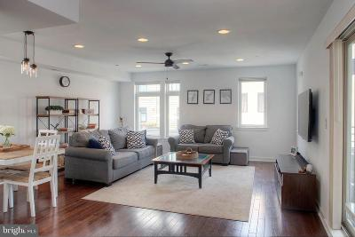 Northern Liberties Condo For Sale: 415 Wallace Street #2E