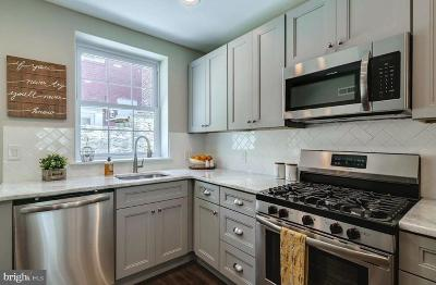 Philadelphia Single Family Home For Sale: 3032 Agate Street