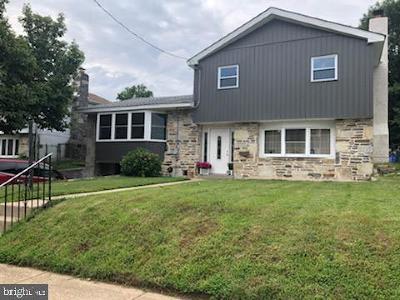 Roxborough Single Family Home For Sale: 631 Renz Street