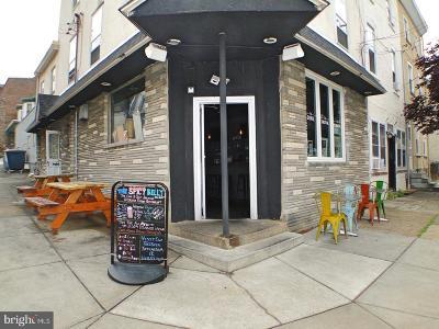 Roxborough Multi Family Home For Sale: 3847 Terrace Street