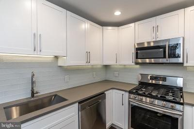 Society Hill Condo For Sale: 528 S 5th Street #3R