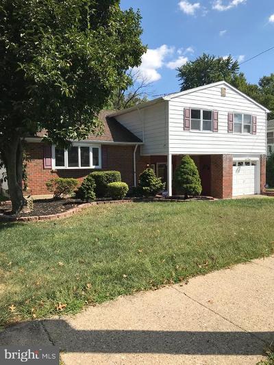 Philadelphia Single Family Home For Sale: 441 Kismet Road