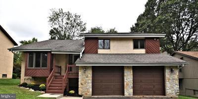 Philadelphia Single Family Home For Sale: 948 Clyde Lane
