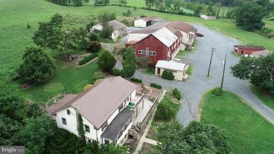 Perry County Single Family Home For Sale: 63 Tressler Road