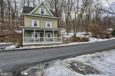 Duncannon Single Family Home For Sale: 219 Schoolhouse Road