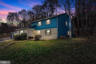 Perry County Single Family Home For Sale: 724 Sheaffers Valley Road