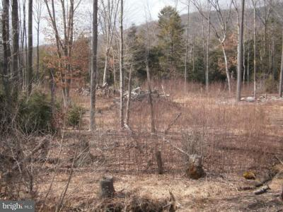 Residential Lots & Land For Sale: Lot #20 Cedar Creek Drive