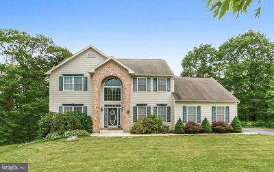 Single Family Home For Sale: 46 Mountain View Lane
