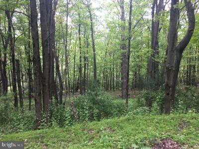 Residential Lots & Land For Sale: Mahanoy Avenue