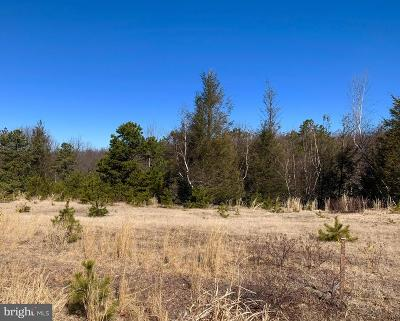 Residential Lots & Land For Sale: 43 Creek Side Drive