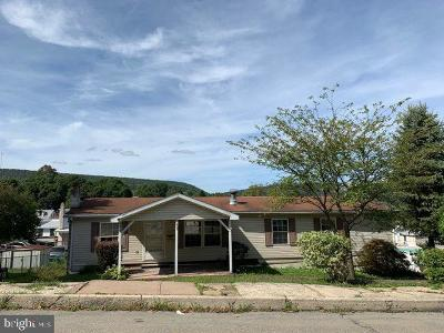 Single Family Home For Auction: 143 Orwigsburg Street