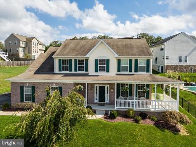 Dallastown Single Family Home For Sale: 485 Pulaski Place