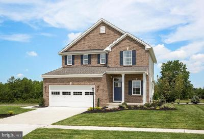 Shrewsbury Single Family Home For Sale: 7 Lillian Court