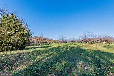 Dillsburg Residential Lots & Land For Sale: 1150 S Mountain Road #LOT 2