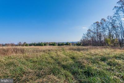 Dillsburg Residential Lots & Land For Sale: 1150 S Mountain Road #LOT 3