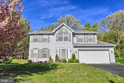 Stewartstown Single Family Home For Sale: 90 S Kennard Dale Avenue