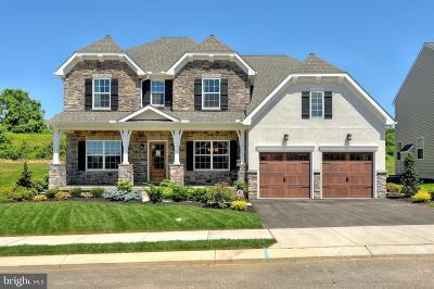 Shrewsbury Single Family Home For Sale: Ervin Drive