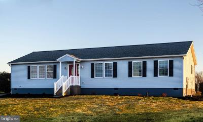 Red Lion Single Family Home For Sale: 386 Manor Road
