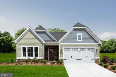 Shrewsbury Single Family Home For Sale: 16 Donald Drive