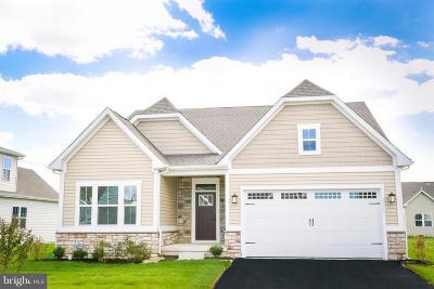 Shrewsbury Single Family Home For Sale: 12 Donald Drive
