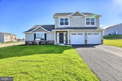 Dillsburg Single Family Home For Sale: 10 Windy Lane