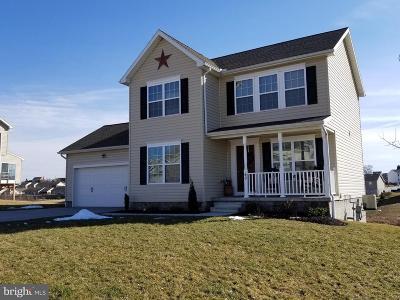 Hanover Single Family Home For Sale: 60 Joshua Drive
