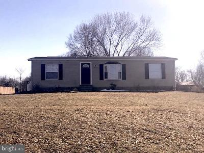 Manchester Single Family Home For Sale: 1125 Conewago Creek Road